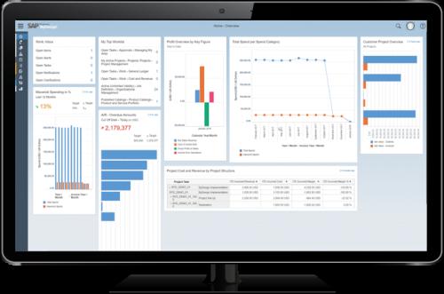 SAP-Business-ByDesign-Screenshot